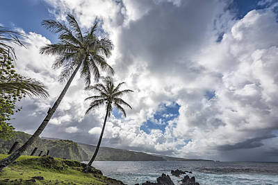Photograph - Two Palms On Maui by Jon Glaser