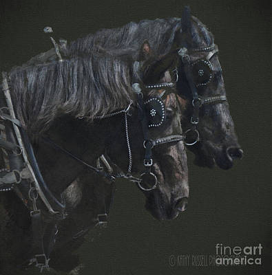 Photograph - Two Percherons by Kathy Russell