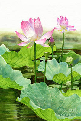 Lotus Leaves Painting - Two Pink Lotus Blossoms With Bud by Sharon Freeman