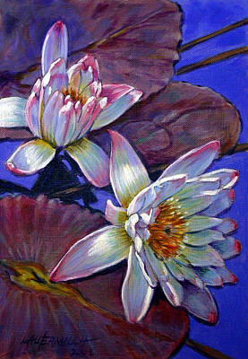 Two Pink Water Lilies Art Print by John Lautermilch