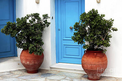 Photograph - Two Plants By The Blue Door by John Rizzuto