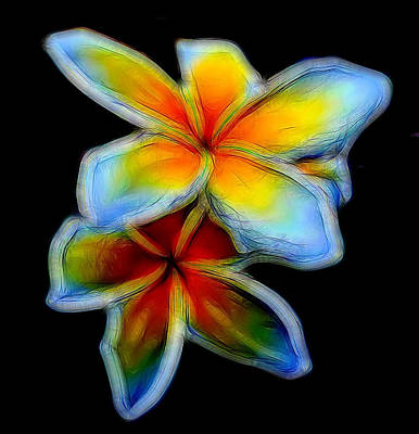 Two Plumerias Art Print by Pamela Walton