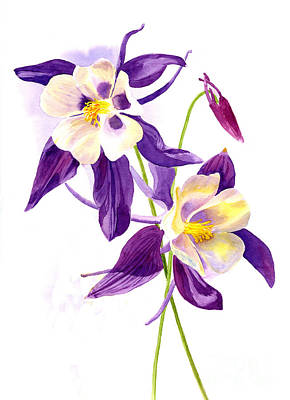 White Flowers Painting - Two Purple Columbine Flowers by Sharon Freeman