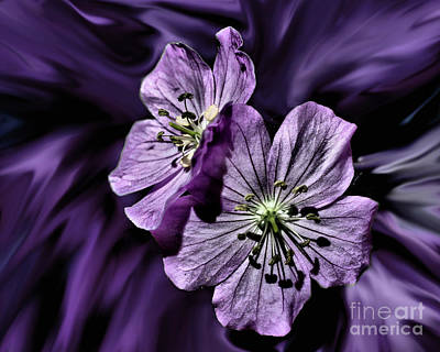 Photograph - Two Purple Flowers by Smilin Eyes  Treasures