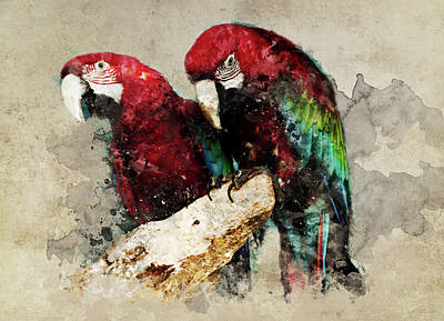 Painting - Two Red Ara Parrots On The Branch by Jaroslaw Blaminsky