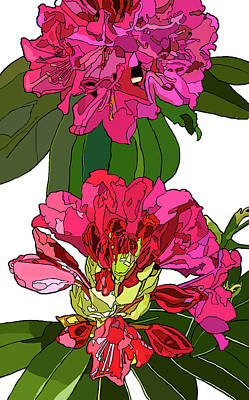 Painting - Two Rhododendrons by Jamie Downs