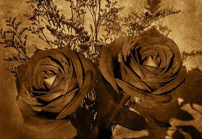 Two Roses Art Print by Kathleen Stephens