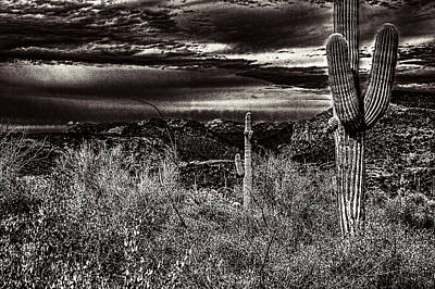 Photograph - Two Saguaros And A Winter Storm Brewing by Roger Passman