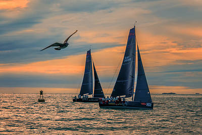 Photograph - Two Sailboats And Seagull Sunset Key West Florida Dsc01273_16 by Greg Kluempers