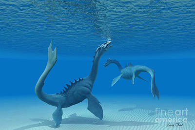 Two Sea Dragons Art Print by Corey Ford