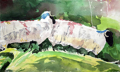Painting - Two Sheep by Kathleen Barnes