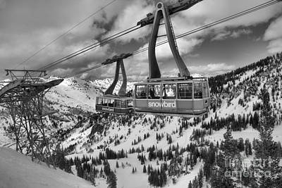 Photograph - Two Snowird Trams Black And White by Adam Jewell