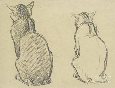 Domestic Animals Drawing - Two Studies Of A Cat by Theophile Alexandre Steinlen