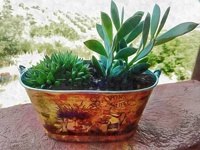 Photograph - Two Succulents In An Ornate Metal Pot by Dorothy Berry-Lound