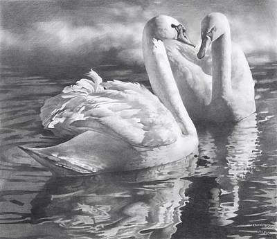 Two Swans Original