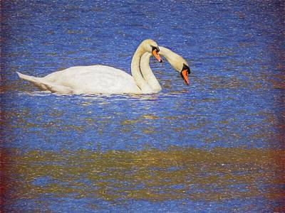 Digital Art - Two Swans Swimming by Rusty R Smith