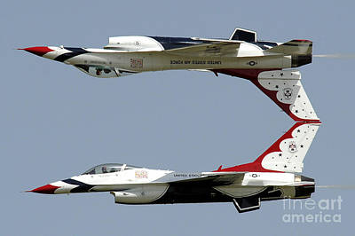 Calypso Painting - Two Thunderbirds by MotionAge Designs