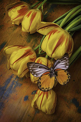 Two Tone Butterfly Print by Garry Gay