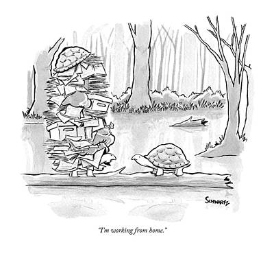 Turtle Wall Art - Drawing - Two Tortoises Speak. One Has A Large Number by Benjamin Schwartz