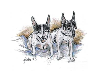 Drawing - Two Toy Fox Terriers by Deborah Willard