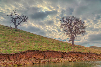 Photograph - Two Trees And Clouds At Los Vaqueros by Marc Crumpler