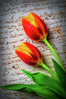 Two Tulips On Old Letter Art Print
