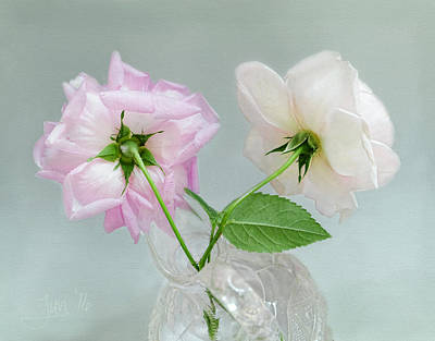 Photograph - Two Vintage Roses by Louise Kumpf