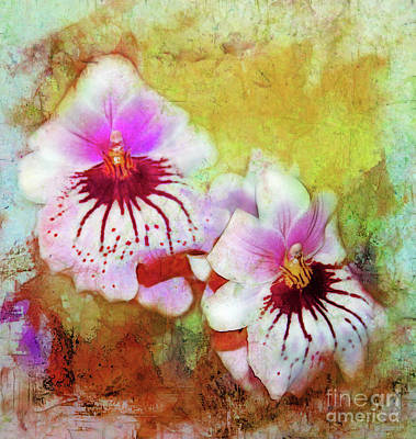 Photograph - Two Watercolor Orchids by Judi Bagwell