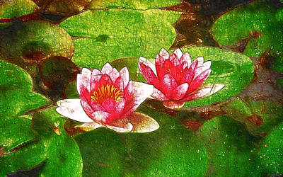 Graphics Painting - Two Waterlily Flower by Lanjee Chee