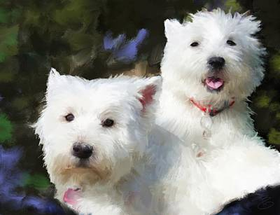 Two Westies Art Print