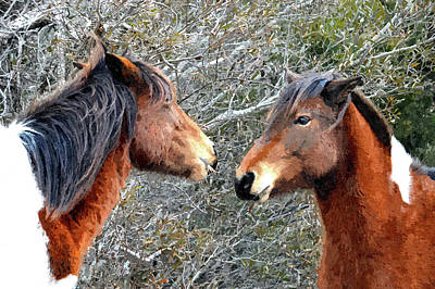 Photograph - Two Wild Ponies Of Assateague Island In Painterly Style by Bill Swartwout Fine Art Photography