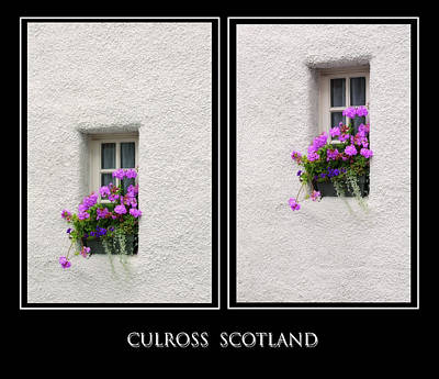 Photograph - Two Windows With Geranium. Culross. Scotland by Jenny Rainbow