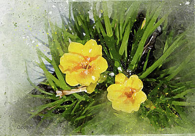 Digital Art - Two Yellow Beauties-2 by Peggy Cooper