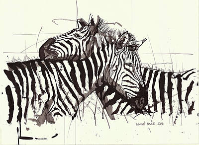 Two Zebra Black Ink Drawing 2 Art Print by Morne Fourie
