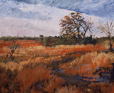 Typical Texas Field Art Print by Jimmie Trotter