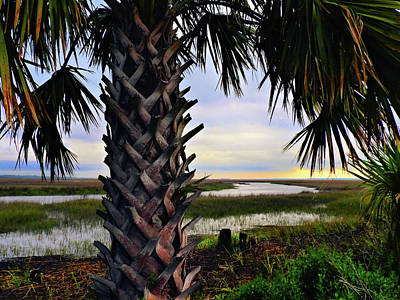 Photograph - Typically Coastal by Laura Ragland