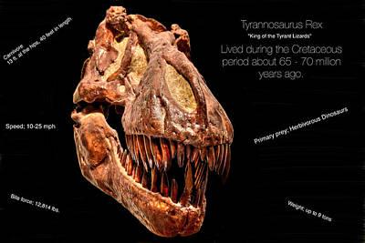 Photograph - Tyrannosaurus Rex by Richard Gehlbach