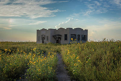 Sunflowers Royalty-Free and Rights-Managed Images - Tyrone School - Otero County, Colorado by Bridget Calip