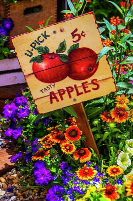 Photograph - U-pick Five Cent Apples by Garry Gay