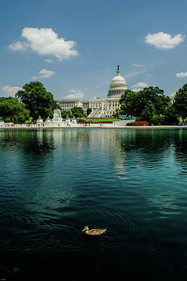 Photograph - U S Capitol With A Duck by Allen Sheffield