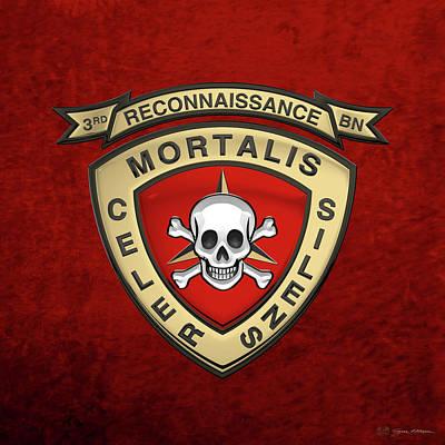 U S M C  3rd Reconnaissance Battalion -  3rd Recon Bn Insignia Over Red Velvet Original