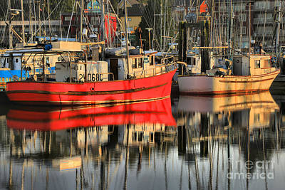 Photograph - Ucluelet Harbor Reflections by Adam Jewell