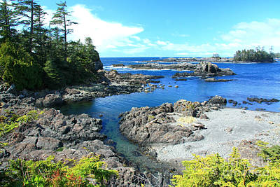 Photograph - Ucluelet Shores by Frank Townsley