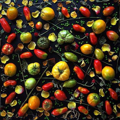 Photograph - Heirloom Tomato Patterns by Sarah Phillips
