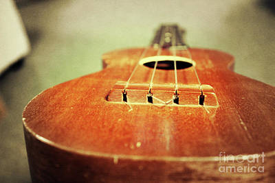 Photograph - Uke by Paul Cammarata