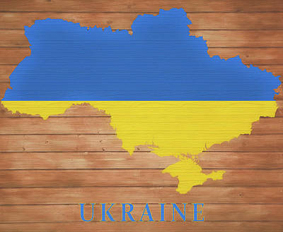 Mixed Media - Ukraine Rustic Map On Wood by Dan Sproul
