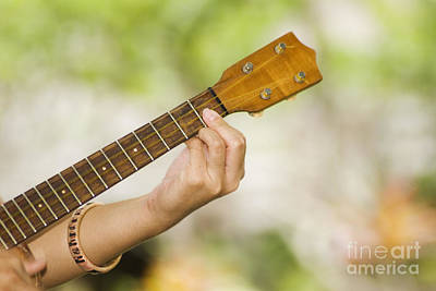 Musical Influence Photograph - Ukulele by Himani - Printscapes