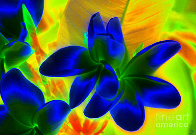 Abstract Sights Digital Art - Ultraviolet by David Lee Thompson