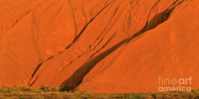 Photograph - Uluru Close Up by Tim Richards