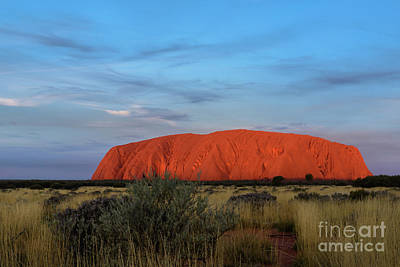 Photograph - Uluru Sunset 03 by Werner Padarin